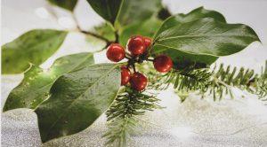 season - クリスマスリースに松ぼっくりを飾る意味ってなに?